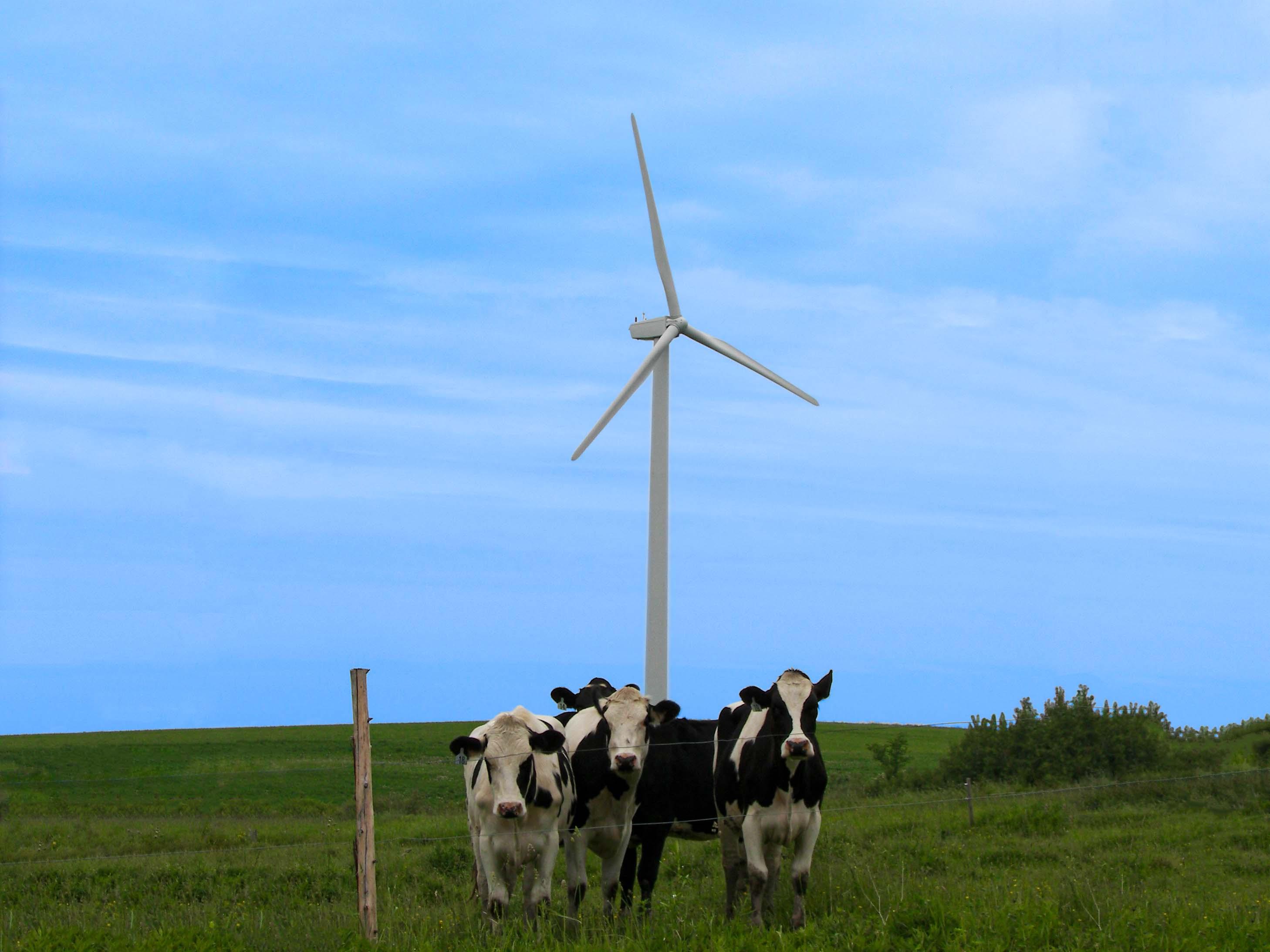 LEED Green Power ― Sterling Planet
